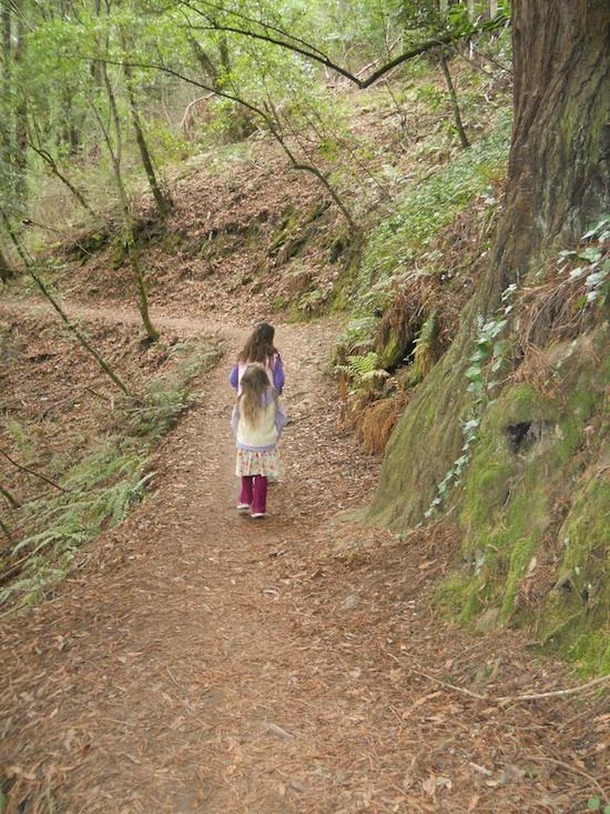 Woodswalk